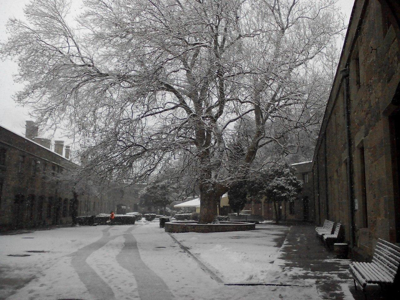 Воронцовский дворец в снегу: хозяйственный дворик