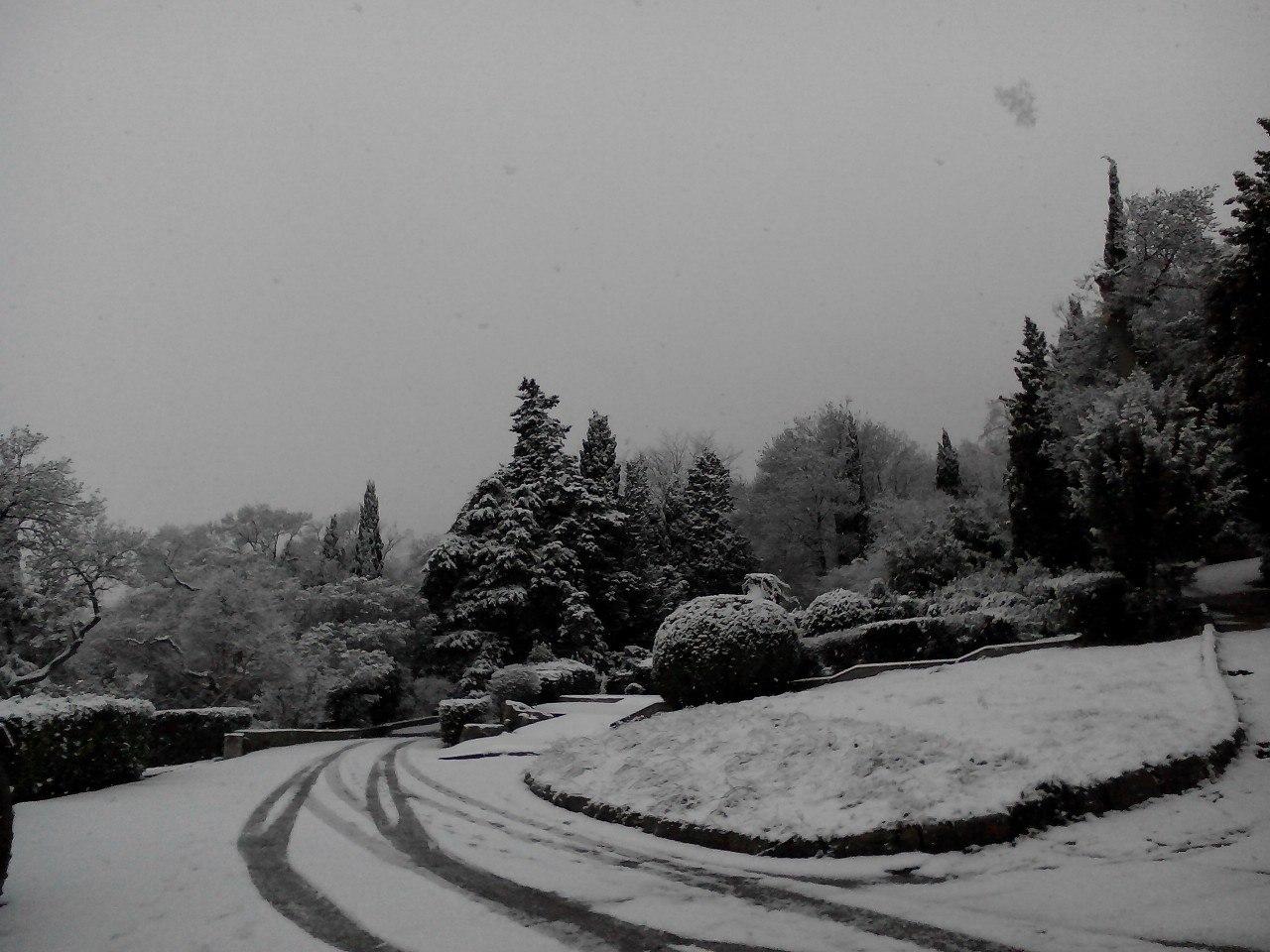 Воронцовский дворец и парк в снегу: западный вход во дворец