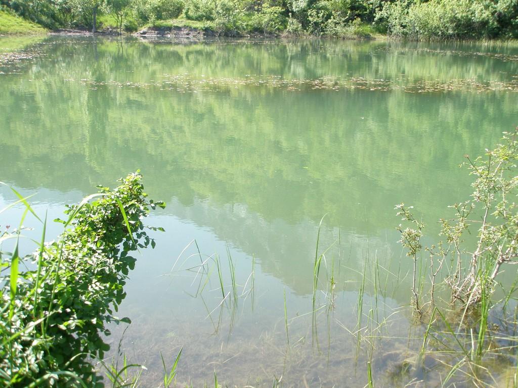 Озеро в Алупке на фоне Ай-Петри