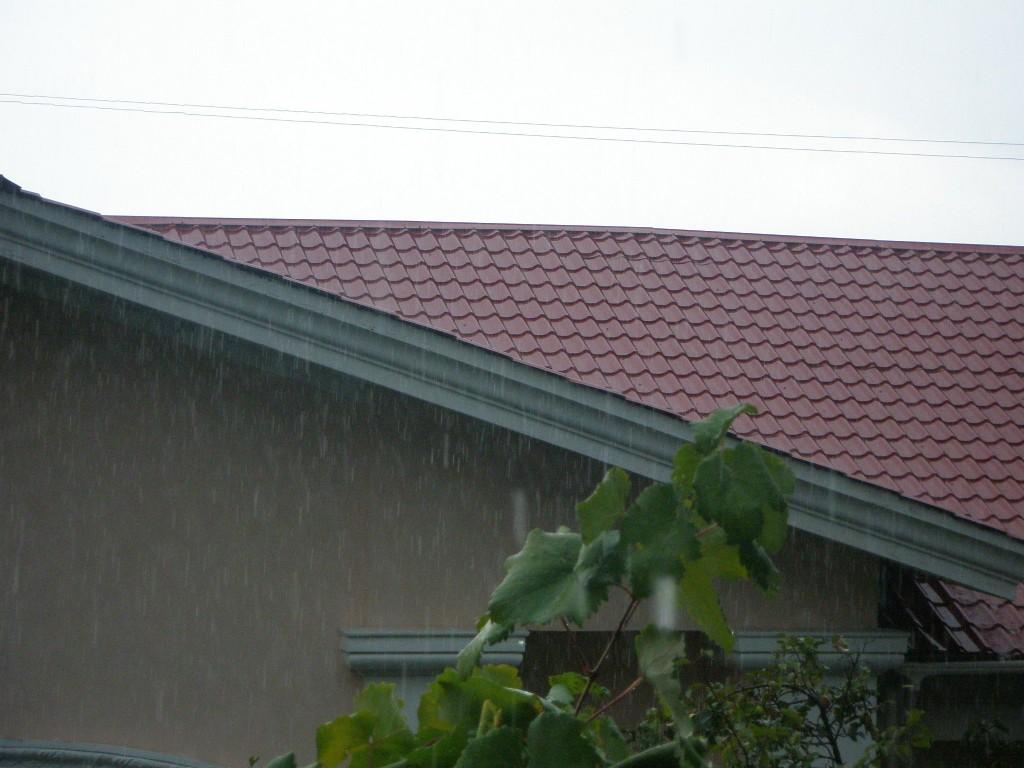 Погода в Алупке 11 февраля, Погода в Алупке 16 февраля