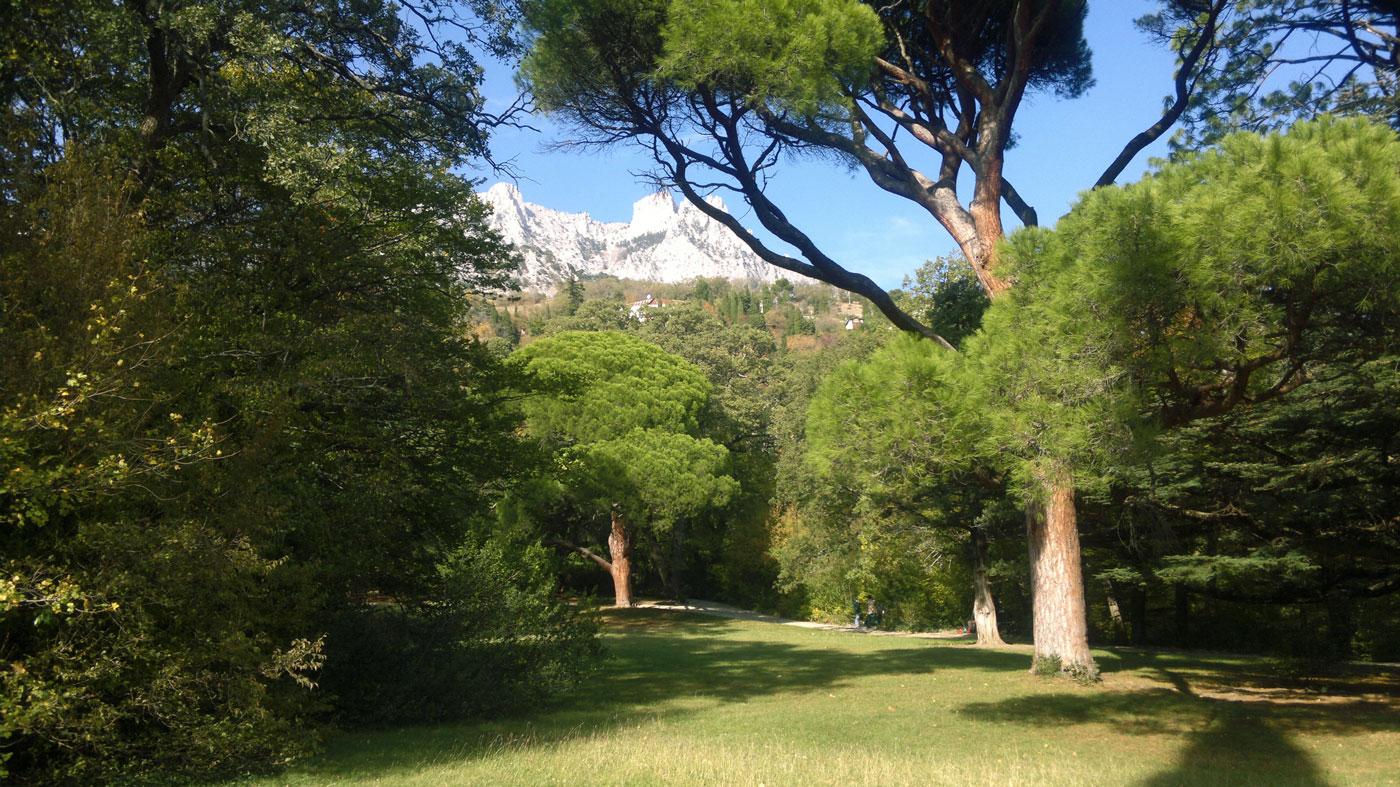 Воронцовский парк - вид на горы