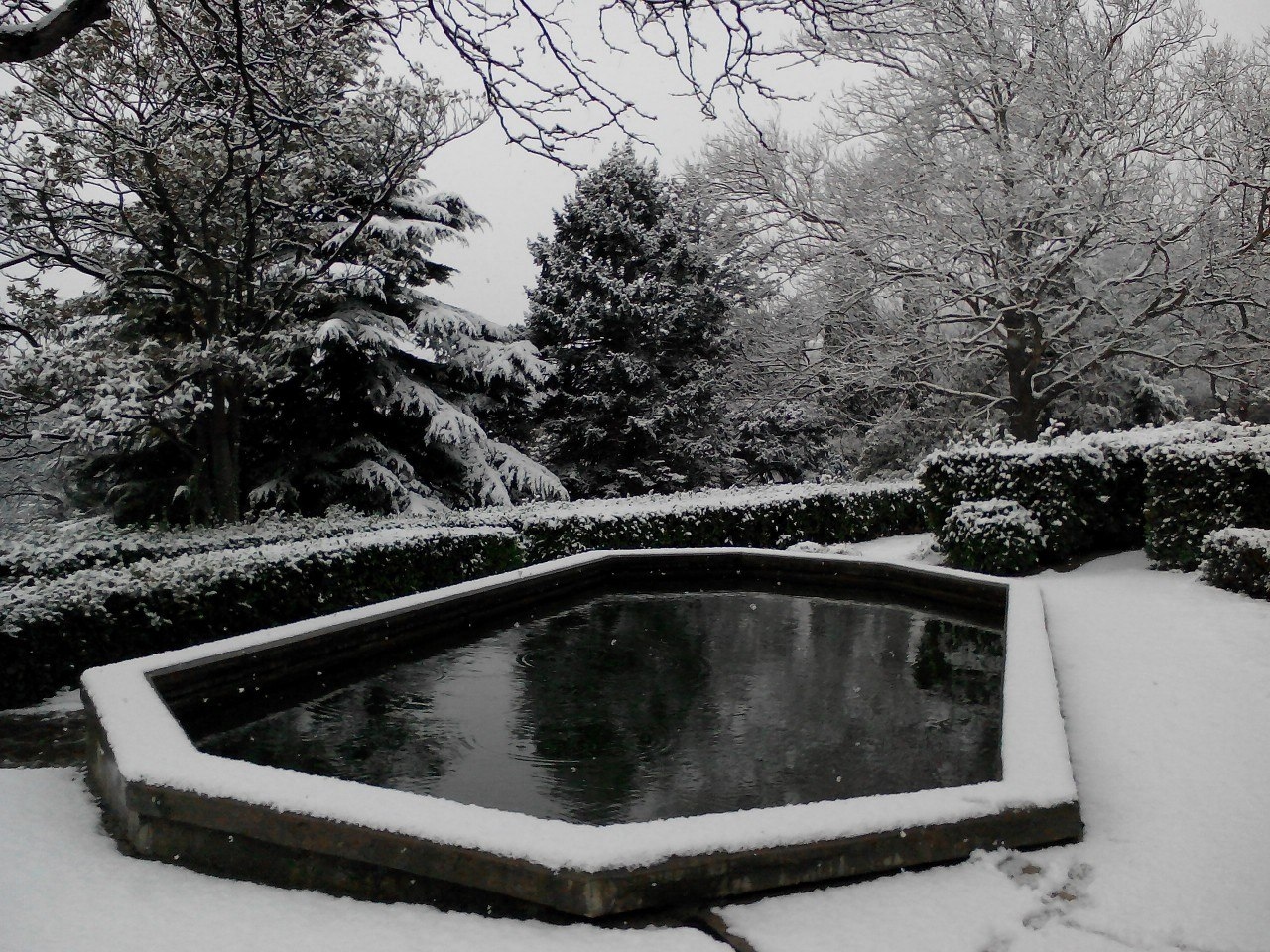 Фото Алупки зимой: Воронцовский дворец и парк в снегу