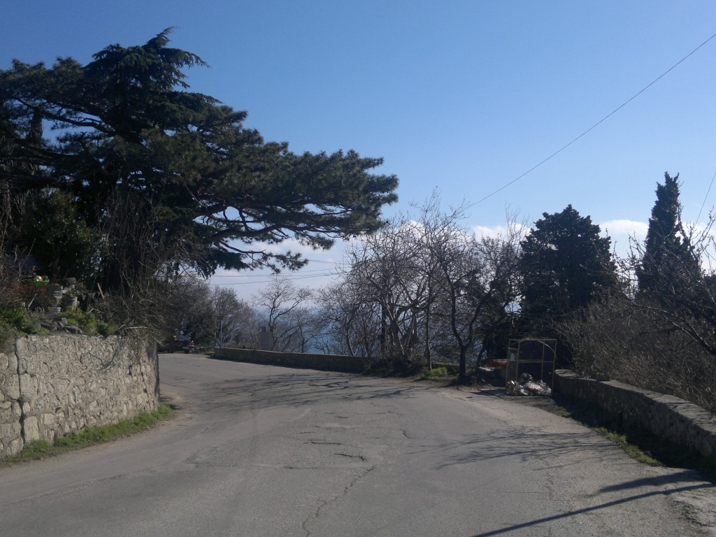Погода в Алупке 14 марта