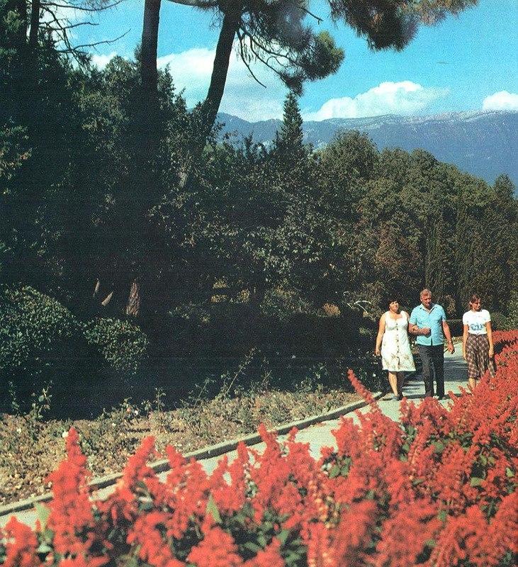 Весенняя Ялта в 1980-х годах: цветущая аллея