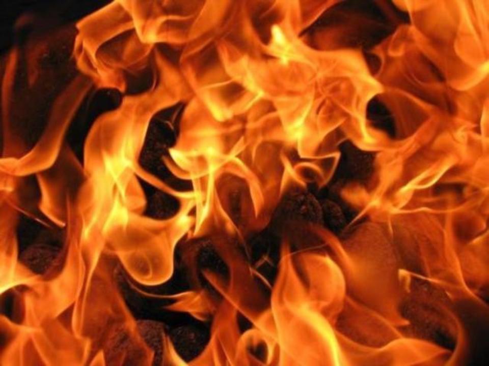 В этом году на территории Большой Ялты произошло 29 пожаров