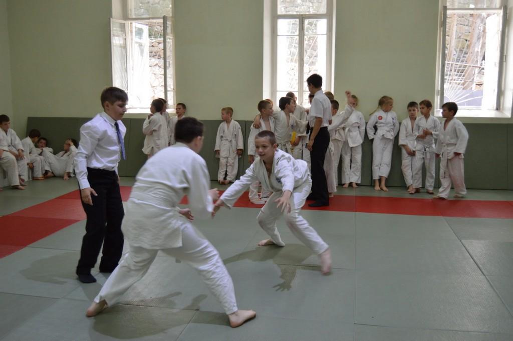 Алупкинское отделение ДЮСК «Титан» продемонстрировало свои навыки