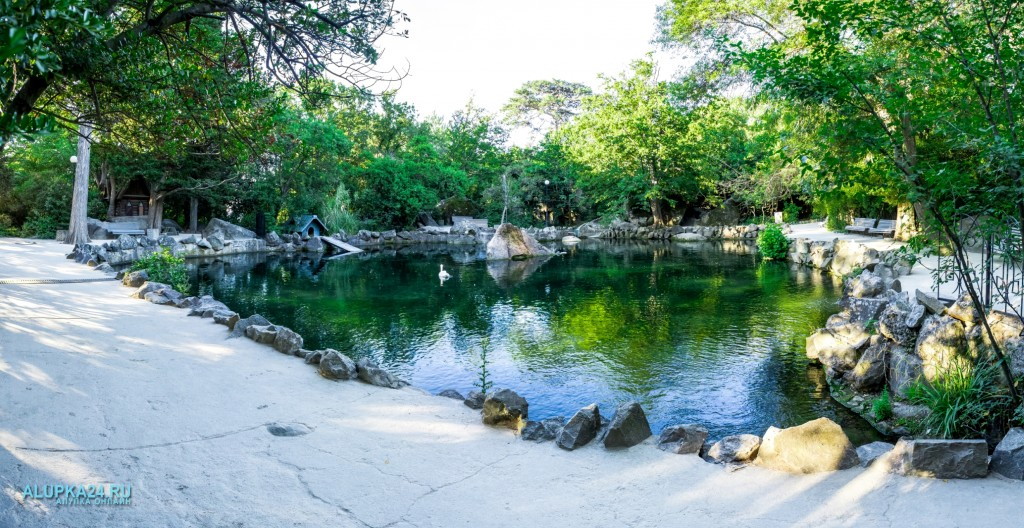 «8 чудес Алупки»: три озера в Воронцовском парке