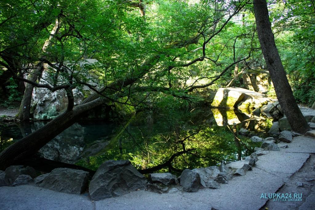 Третье озеро в Воронцовском парке