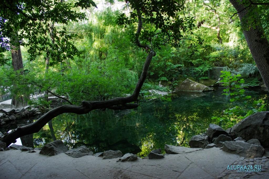 Второе озеро в Воронцовском парке