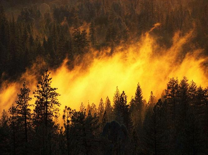 В Крыму сохраняется высокая пожароопасность