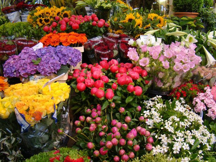 Цветочный рынок в Ялте перенесут к Дому торговли