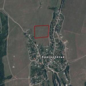 Продам участок в с. Краснолесье (4,5 га)