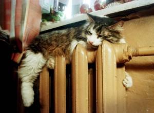 Жители Гаспры жалуются на холод в домах