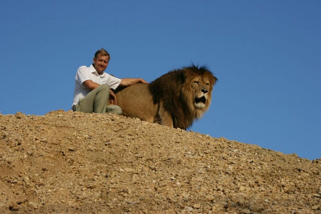 В сафари-парке «Тайган» умер первый вожак лев Лорд