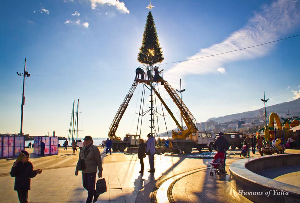 В Ялте начали установку новогодней ёлки