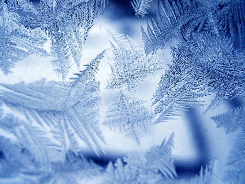 В Большой Ялте на выходных ударит мороз