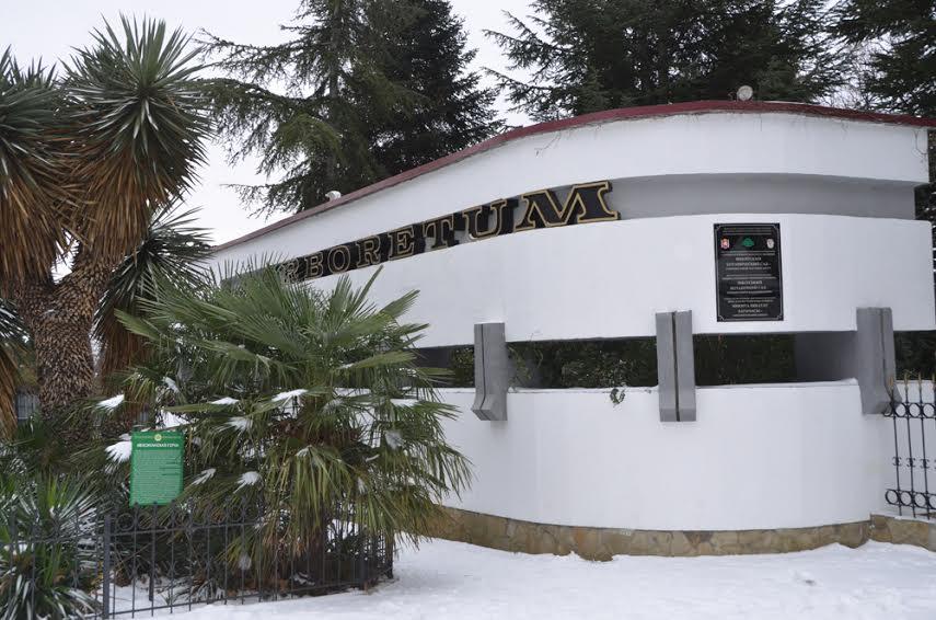 В Никитском ботаническом саду откроется лаборатория «Биотрон»