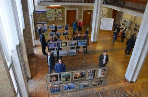 На фотовыставке в Ялте выберут лучшее фото 2015 года