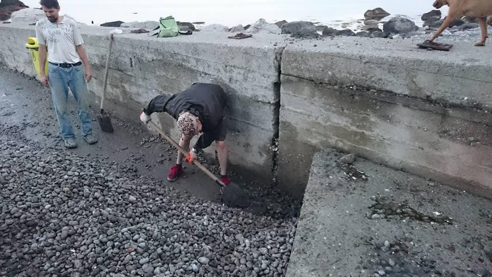 Субботник в 2015 году на пляже