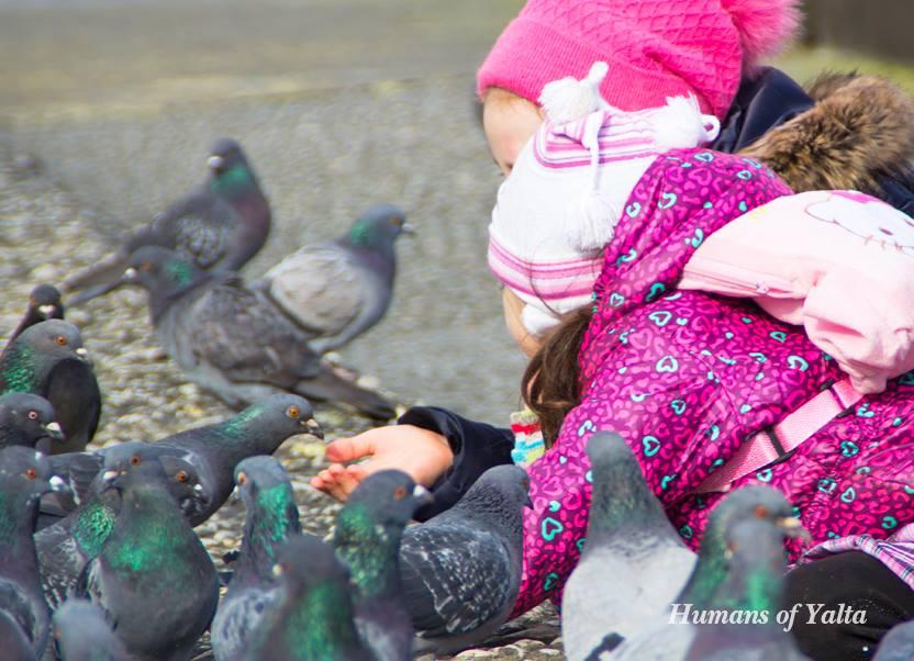 Голуби на Ялтинской набережной
