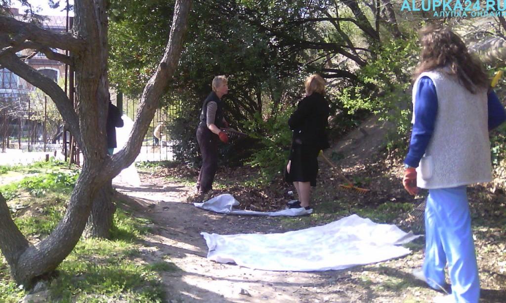 Санатории Алупки присоединились к всекрымскому субботнику