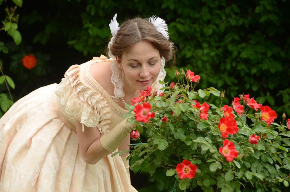 Розы Никитского ботанического сада 7