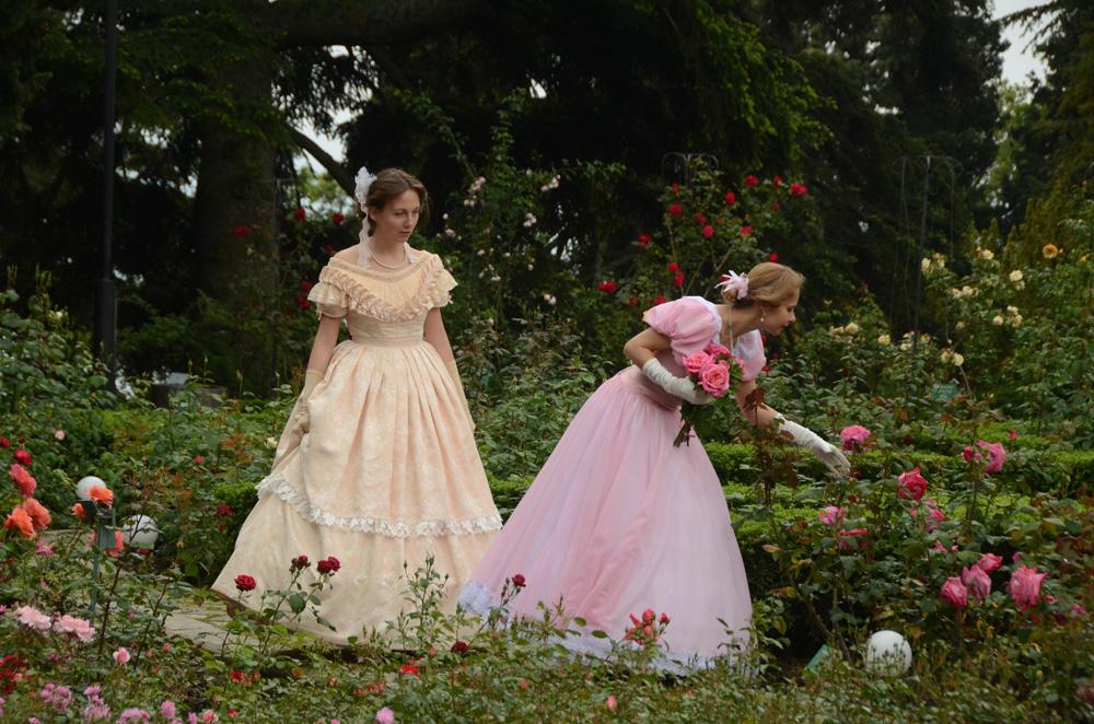 Розы Никитского ботанического сада 2