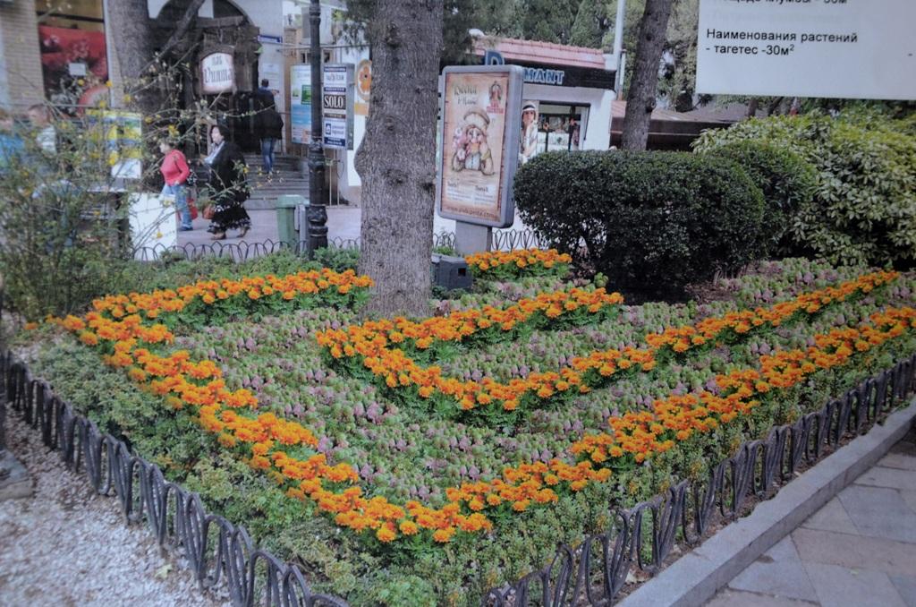Большую Ялту озеленят цветочными клумбами  2