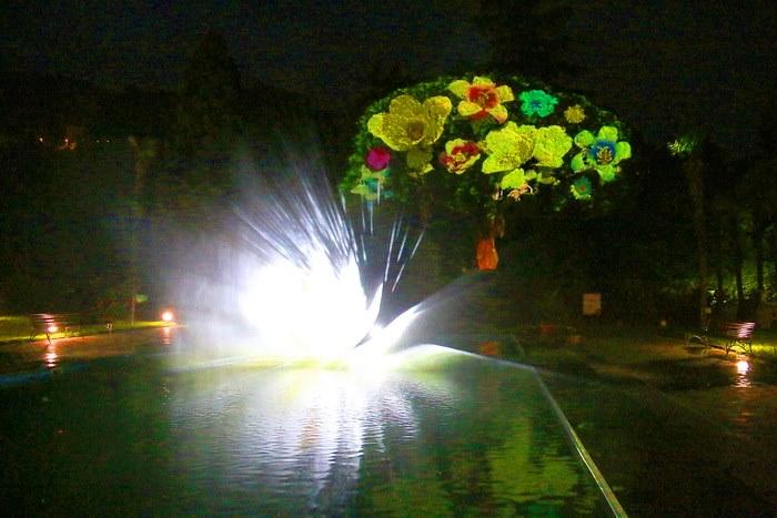 3D шоу в Никитском ботаническом саду 7