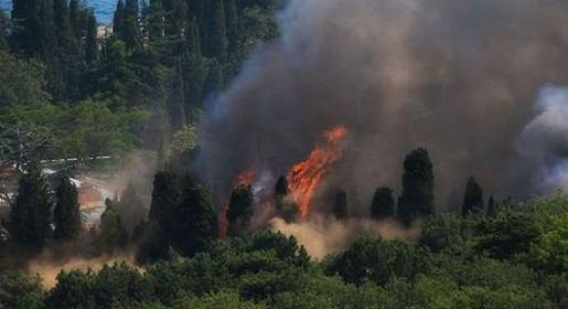 Пожар в санатории «Жемчужина»