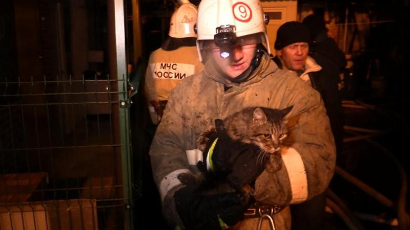 Пожар в Ялте лишил жилья более 30 человек