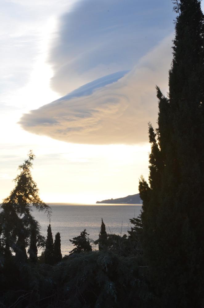 Вид из Никитского Ботанического сада