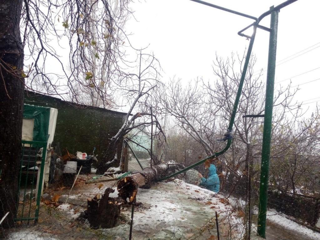 Последствия штормового ветра в Большой Ялте 1