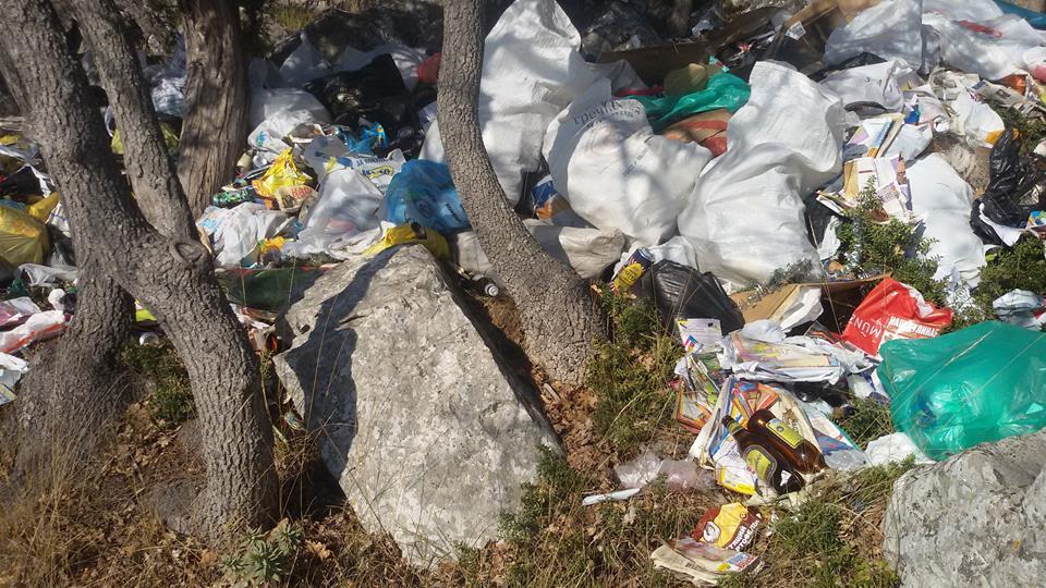 В Большой Ялте Царская тропа остаётся завалена мусором (Фото: Евгений Жуков) 3