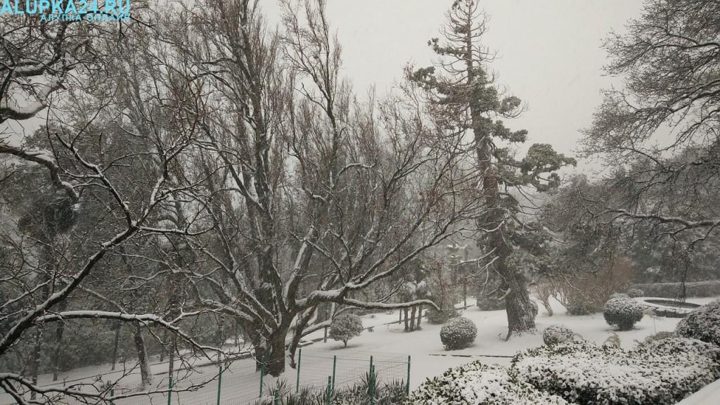 Воронцовский парк в снегу 2