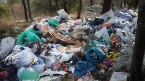 В Большой Ялте Царская тропа остаётся завалена мусором (Фото: Евгений Жуков)