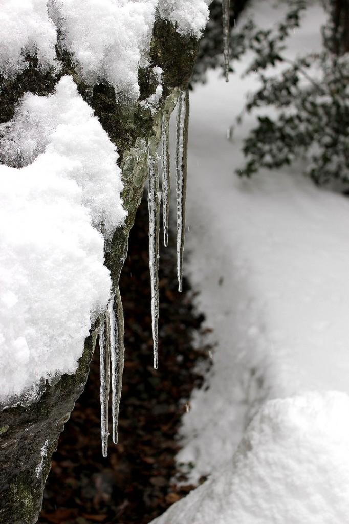 Пейзажи зимнего города (Алупка фото) 3
