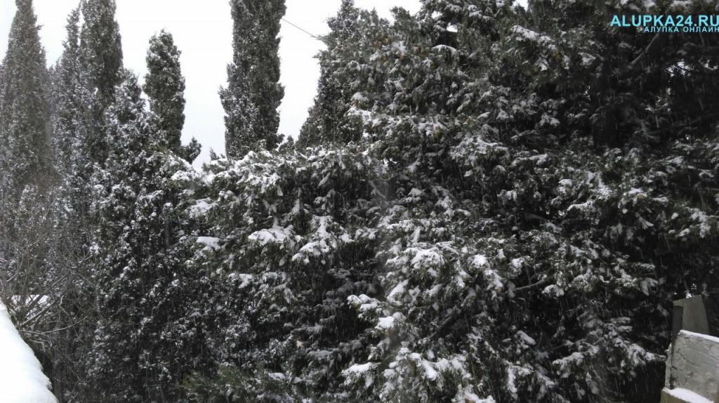 Алупка в снегу зимой 2017 4