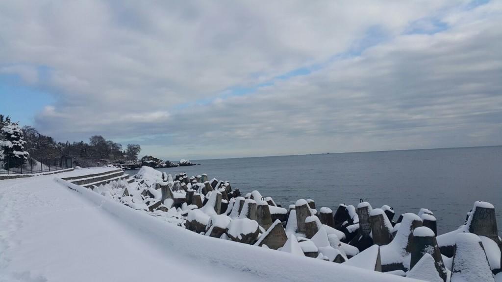 Побережье Алупки в снегу (Фото: Ксения Быкова)