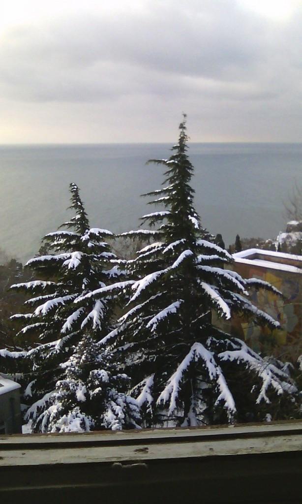 Алупка в снегу (Фото: Светлана Паращевина)