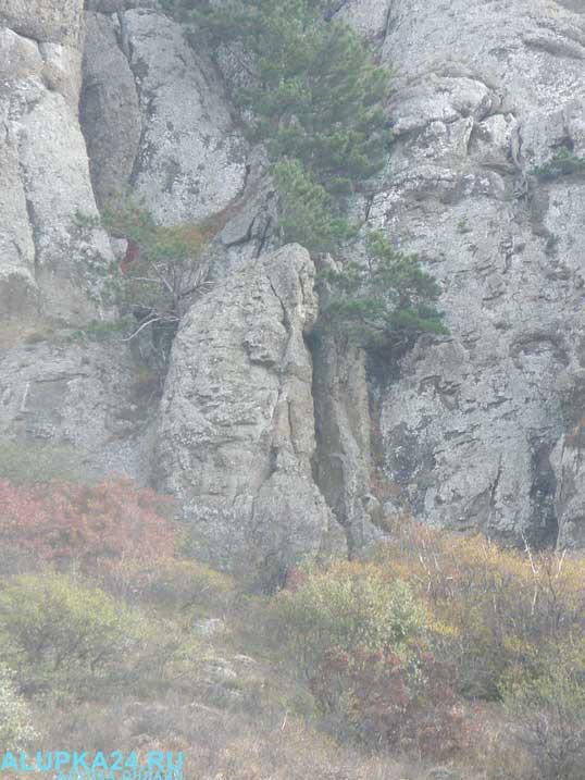 Скала в Долине приведений 4