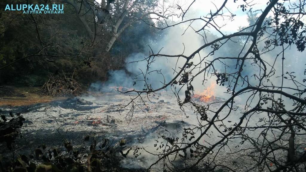 В Воронцовском парке горел отвал листьев