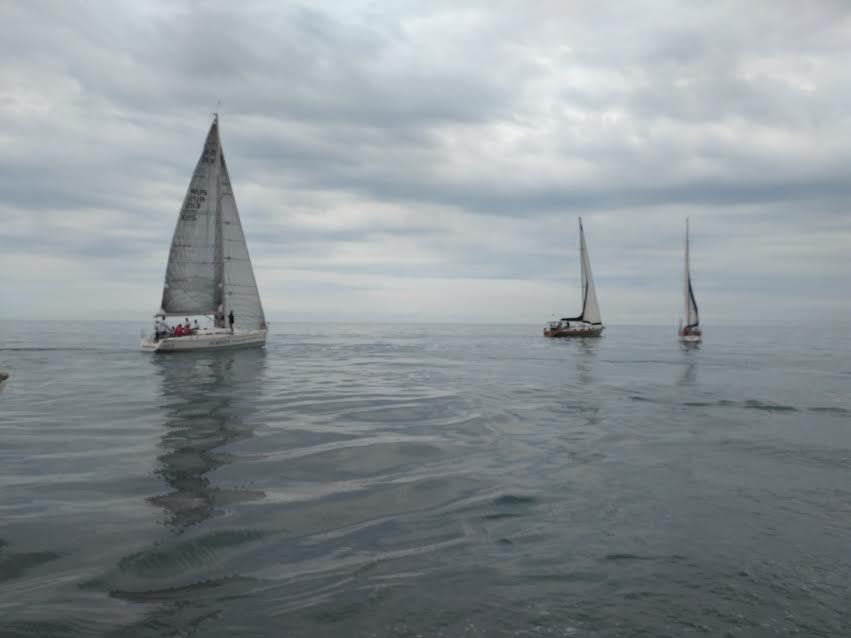 В Ялте проходит Чемпионат России по парусному спорту