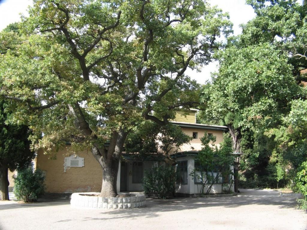 Землю на территории санатория имени Боброва вернут пансионату