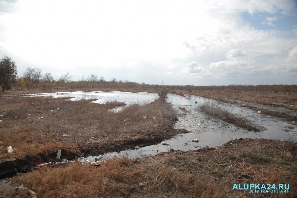Целебный источник среди полей и болота в Джанкойском районе 5
