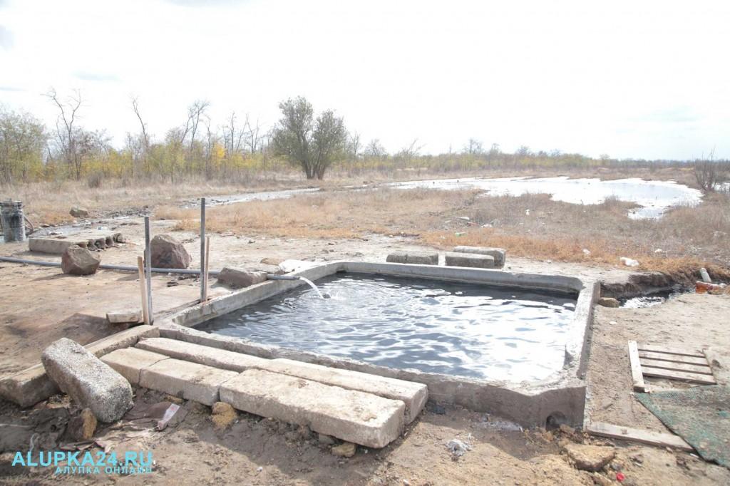 Целебный источник среди полей и болота в Джанкойском районе 4