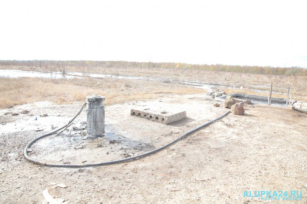 Целебный источник среди полей и болота в Джанкойском районе 6