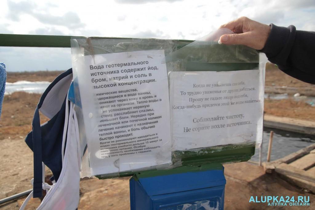 Целебный источник среди полей и болота в Джанкойском районе 3