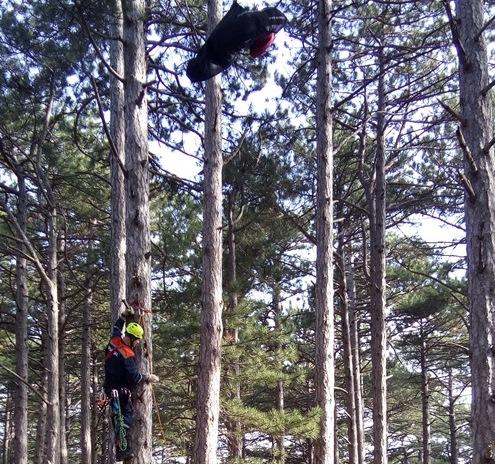 В Мисхоре парапланерист застрял в деревьях на 20-мтеровой высоте