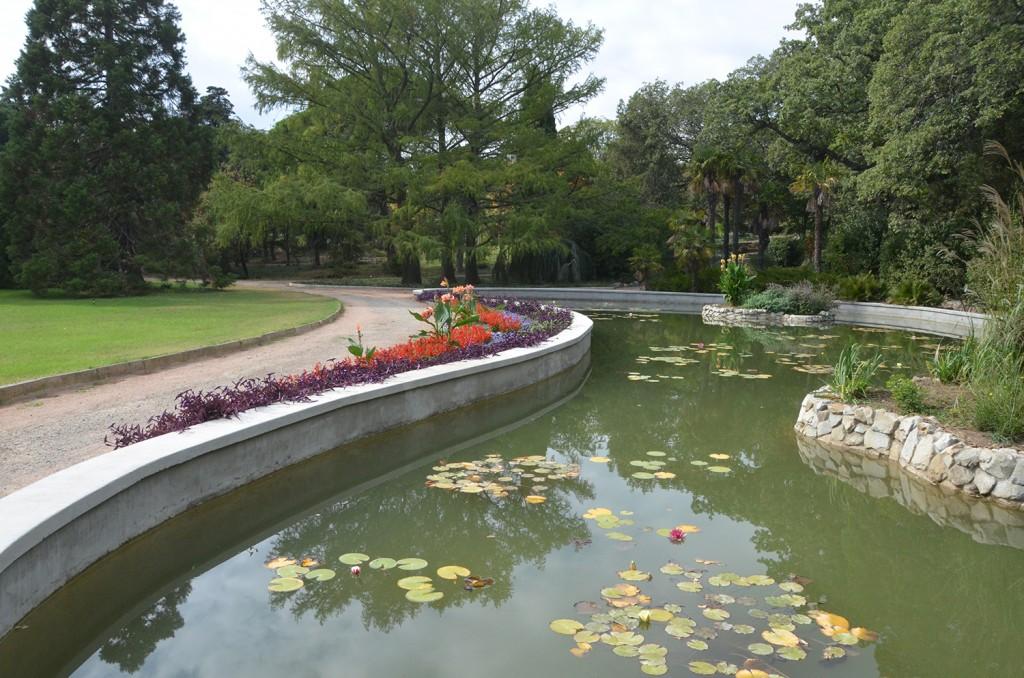 В Никитском ботаническом саду после 25-летнего простоя открывается парк Монтедор